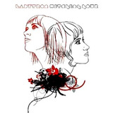 Cd   Ladytron  2005  Witching Hour