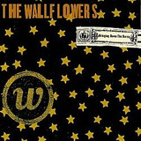 Cd The Wallflowers   Bringing Down Horse  usado otimo