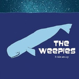 Cd The Weepies Hideaway Imp