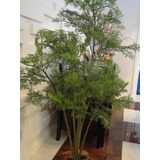 Planta Artificial arranjo Pinheiro Estil� 1 30mt De Altura