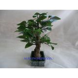 Vaso Bonsai Verde Planta Artificial Em Seda