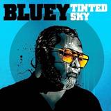 Bluey Tinted Sky Cd Import