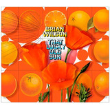 Brian Wilson   That Lucky Old Sun   Cd