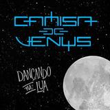 Camisa De Venus   Dançando Na Lua