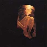 Cd   Alice In Chains       Nothing Safe     B44
