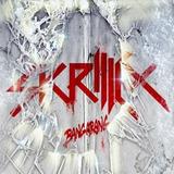 Cd   Skrillex   Bangarang   2012