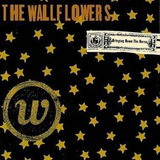 Cd   The Wallflowers   Bringing Down The Norse   Lacrado