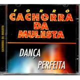 Cd  Forró Cachorra Da Mulesta   Dança Perfeita