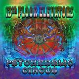 Cd 13th Floor Elevators Psychedelic Circus Importado
