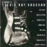 Cd A Tribute To Stevie Ray Vaughan   Va
