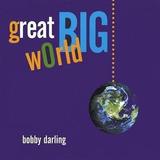 Cd Bobby Darling Great Big World Importado