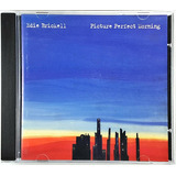 Cd Edie Brickell   Picture Perfect Morning   Ca