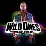 Cd Flo Rida   Wild Ones
