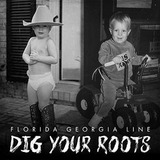 Cd Florida Georgia Line Dig Your Roots