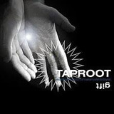 Cd Gift Taproot