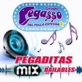 Cd Grupo Pegasso Del Pollo Estevan Pegaditas Mix Bailables