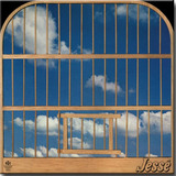 Cd Jessé   Volume 3   1982