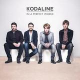 Cd Kodaline In A Perfect World