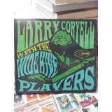 Cd Larry Coryell With The Wide Hive Players