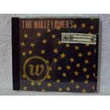 Cd Original The Wallflowers  Bringing Down The Horse