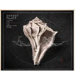 Cd Robert Plant Lullaby And   the Ceaseless Roar