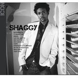 Cd Shaggy Icon