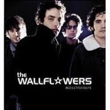 Cd The Wallflowers   Red Letter Days