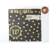 Cd The Wallflowers Bringing Down The    Ganha Caixa Nova B5