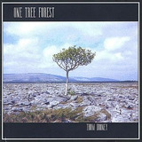 Cd Thom Droney One Tree Forest