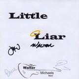 Cd Walter Michaels Band Little Liar