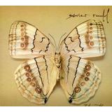 Cd Xavier Rudd White Moth Importado