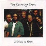 Cd counting Crows children In Bloom em Otimo Estado