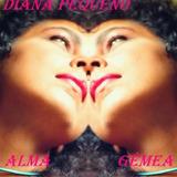 Diana Pequeno alma Gêmea alma Calma ama Moura signo xamã