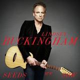 Lindsey Buckingham   Seeds We Sow