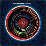 Pendulum   In Silico   Cd