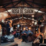 Rosa De Saron   Essencial