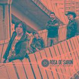 Rosa De Saron   Horizonte Distante   Cd