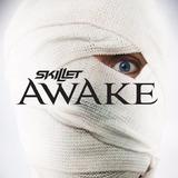 Skillet Awake Cd Import