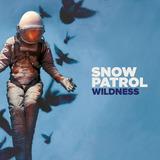 Snow Patrol  Wildness Cd Lacrado