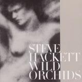 Steve Hackett   Wild Orchids