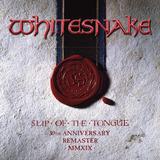 whitesnake-whitesnake Cd Whitesnake Slip Of The Tongue 30th Anniversary